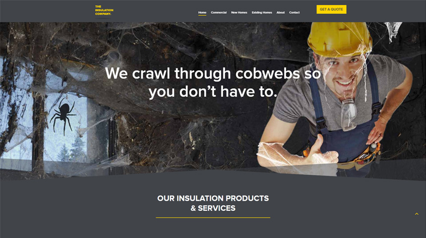 examples of divi theme