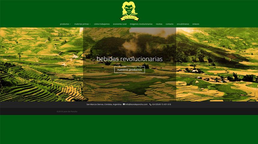 divi site examples